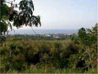 'Viewbeach'