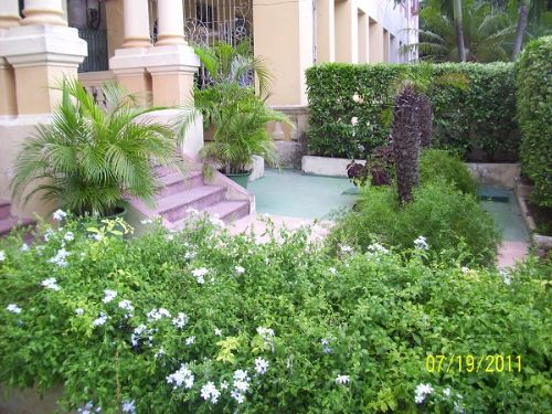 'GARDEN FRONT' Casas particulares are an alternative to hotels in Cuba.