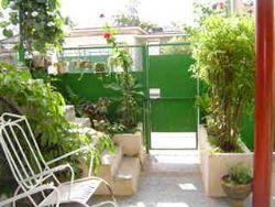 'garden'