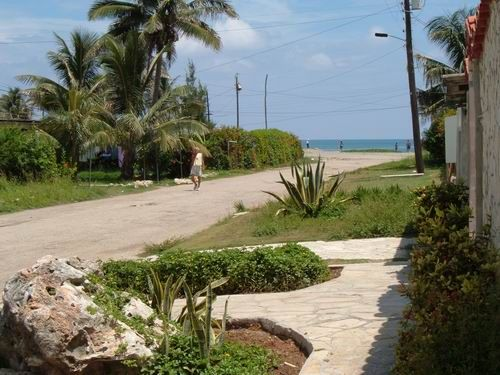 'Beach view'