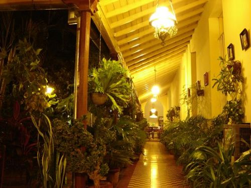 'Interior Hall and Yard' Casas particulares are an alternative to hotels in Cuba.