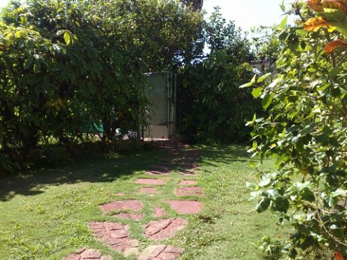 'Entrance by the back of the house' Casas particulares are an alternative to hotels in Cuba.